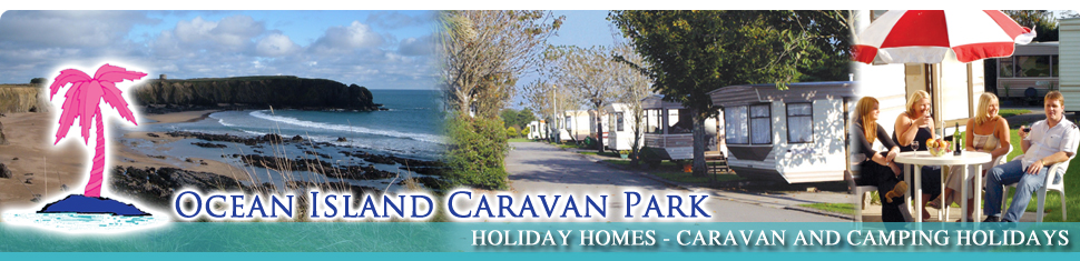 Caravan Parks Wexford Mobile Homes In The South East